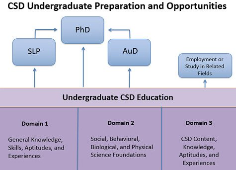 Planning Your Education in CSD